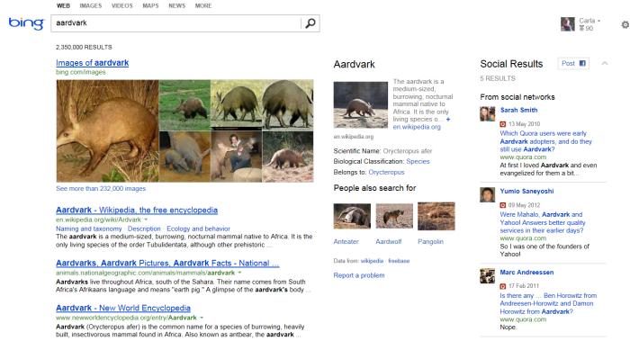 aardvark2
