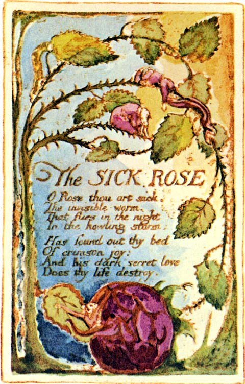 The Sick Rose by William Blake, from Songs of Experience, 1794